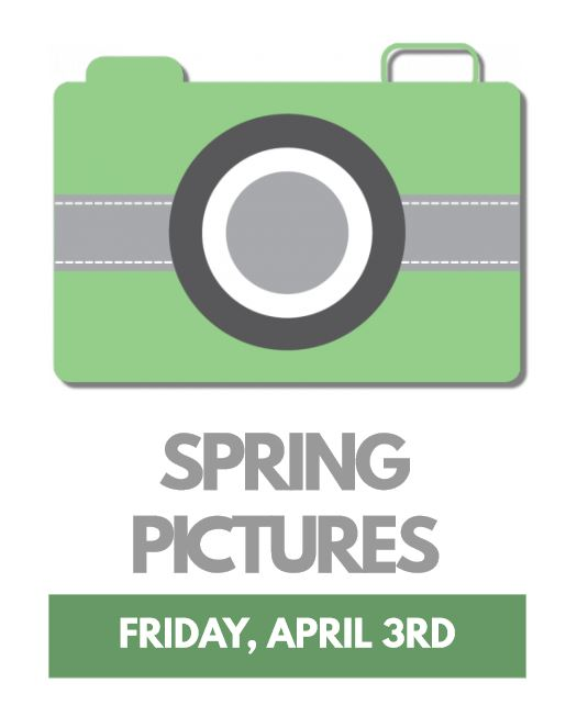 SPRING PICTURE FLYER USE